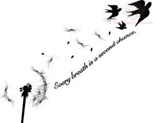 bird chance