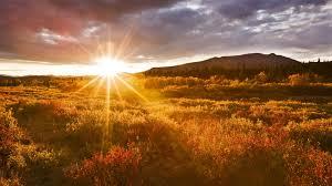 Paleo Sunrise